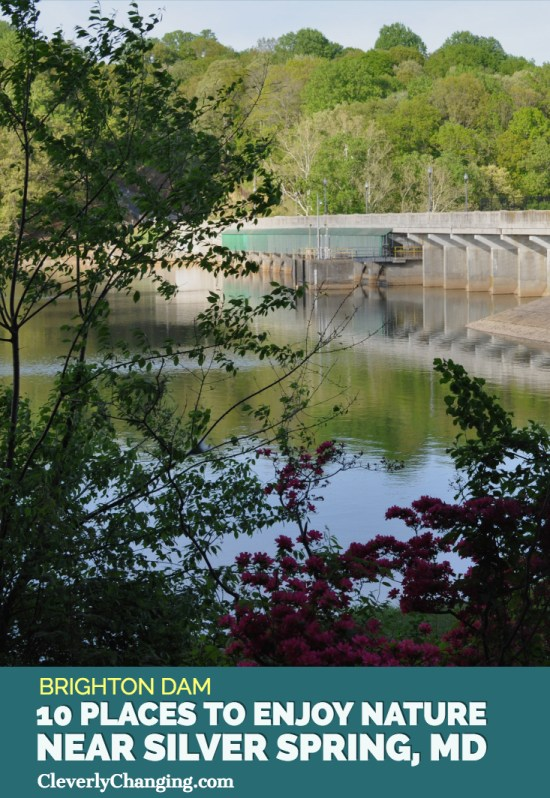 Nature Places to visit - Brighton Dam in Maryland