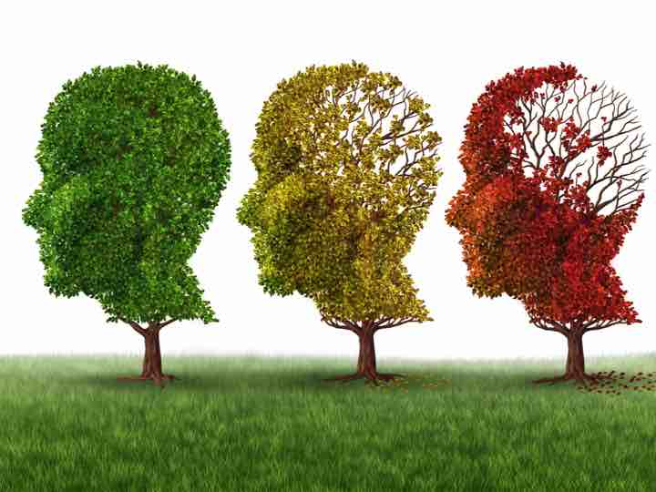 Tau May Be Link Between TBI and Neurodegeneration  Medpage Today