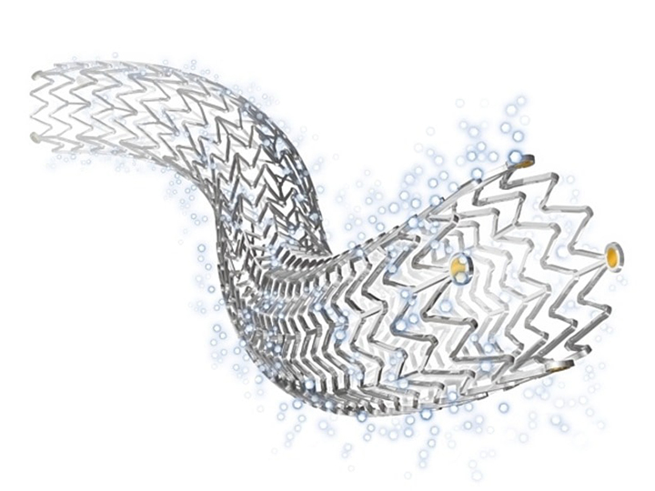 PAD Paclitaxel Stent Safety Is Again Thrown Into Question