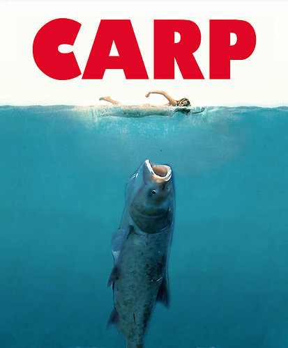 A Fine Kettle of Fish: Searching for a Federal Solution to the Asian Carp Invasion