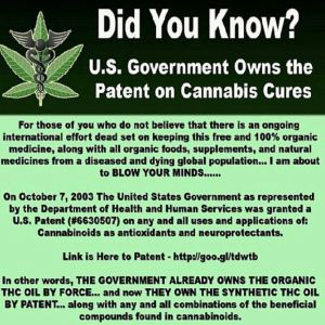 Why is holder and the administration not enforcing federal drug laws, duh!!The truth behind the phony  drug war. U.S Patent 6630507,