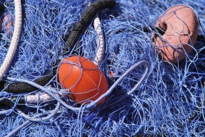 costiera di calafuria reti da pesca Cliccalivorno