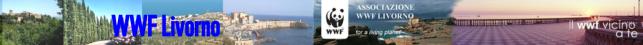 wwf livorno logo CliccaLivorno
