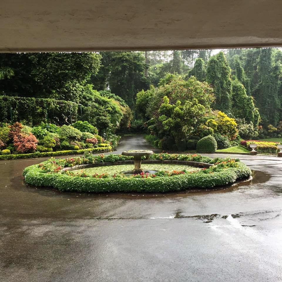 Peradeniya Gardens - Kandy (2)_edited