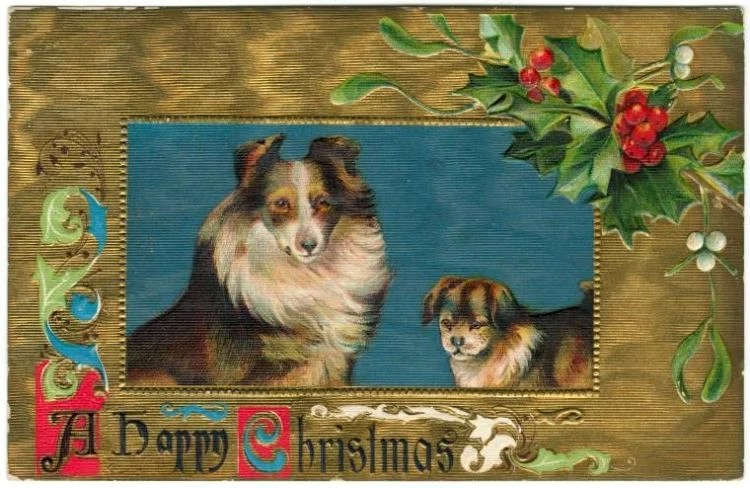 Vintage Christmas postcards with dogs