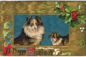 Antique Christmas cards with dogs - vintage postcards (6)