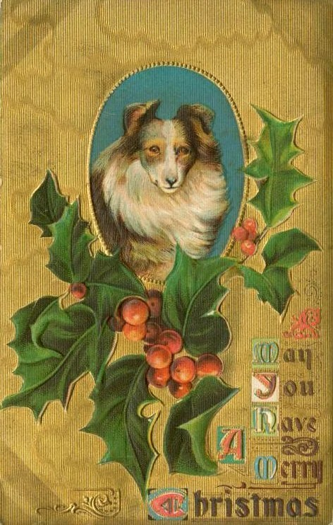 Antique Christmas cards with dogs - vintage postcards (7)