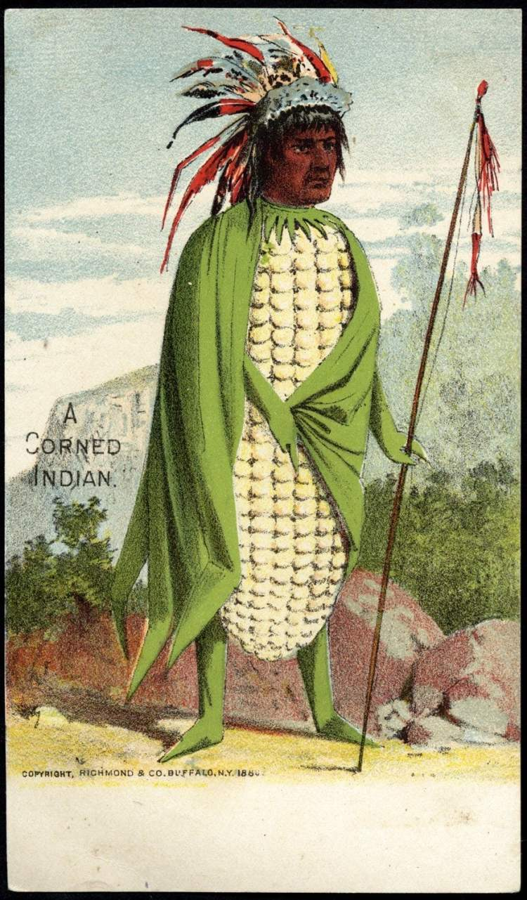 Trade cards with people as vegetables from the 1800s - Man's head on a ear of corn body