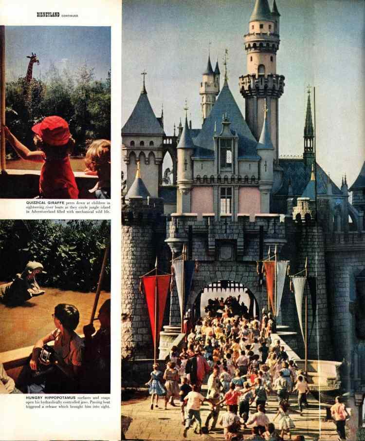 Disneyland opens - Walt Disney's magical new theme park in Southern California 1955 (2)