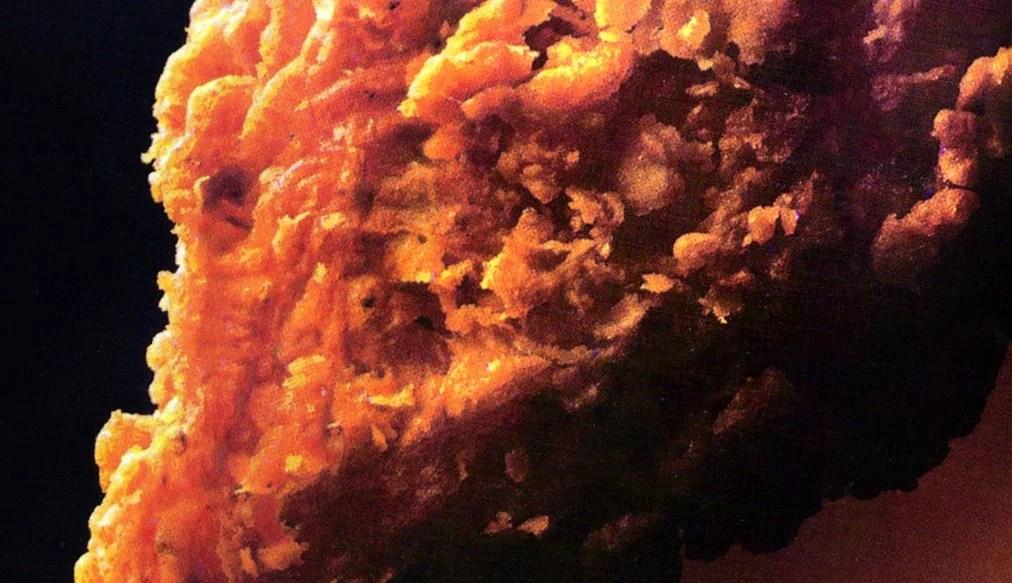 Herb batter fried chicken vintage recipe 1985