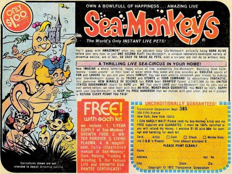 Sea Monkeys ad from 1972