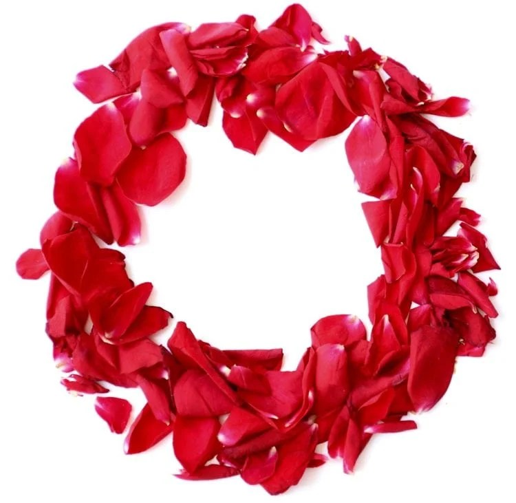 ring of red rose petals