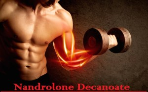 Read more about the article Nandrolone Decanoate
