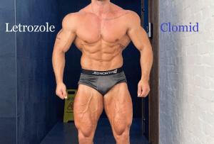 Read more about the article Letrozole VS Clomid
