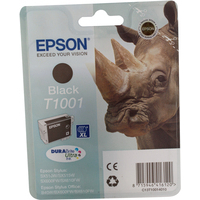 Epson T1001 Ink Cartridge Black C13T100140-0