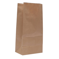 Paper Bag Brown W250 x D150 x H305mm 3.25kg 302165 Pack of 500-0