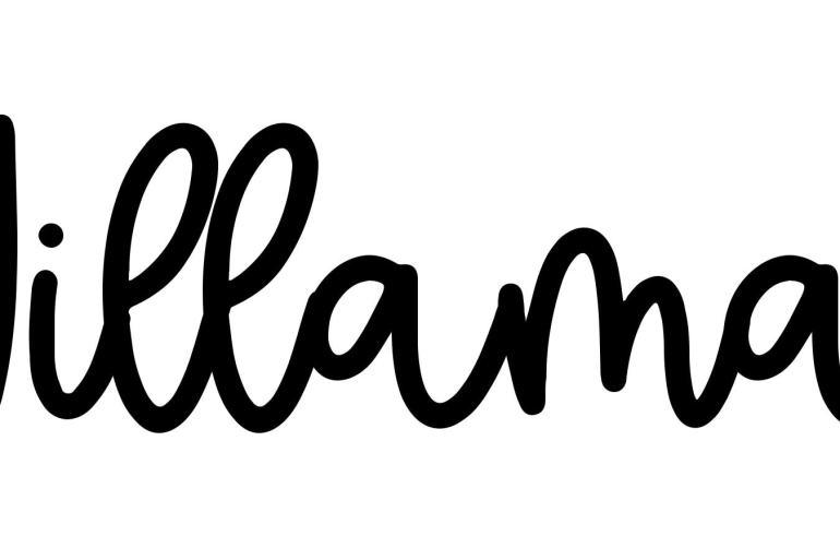 About the baby nameWillamar, at Click Baby Names.com