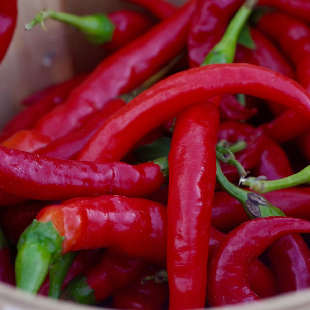 A new study suggests that shoving hot peppers up your ass might be the next health foods