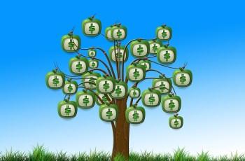 Quanto preciso investir para iniciar um negócio online?
