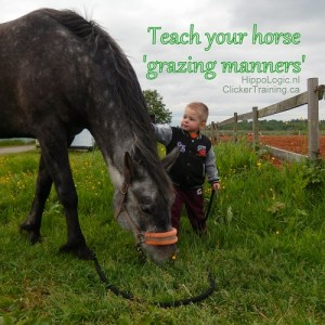 TEach your horse to behave on grass so everyone can handle your horse