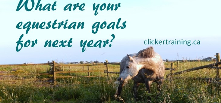 Setting your equestrian goals for 2017, start now!