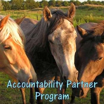 HippoLogic's Accountability Partner Program