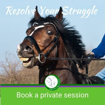 Book an online One-on-one online coaching session to improve your clicker training