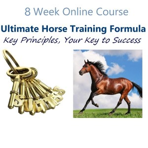 Online course for equine clicker trainers