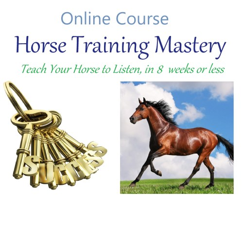 Horse Training Mastery Course