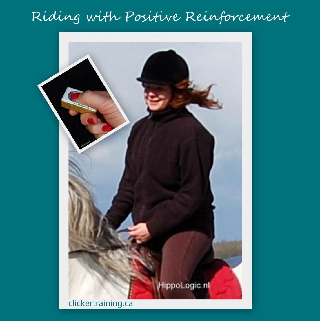 riding positive reinforcement clickertraining hippologic