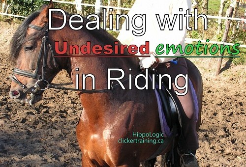 6 steps to start riding with the clicker (5/6)