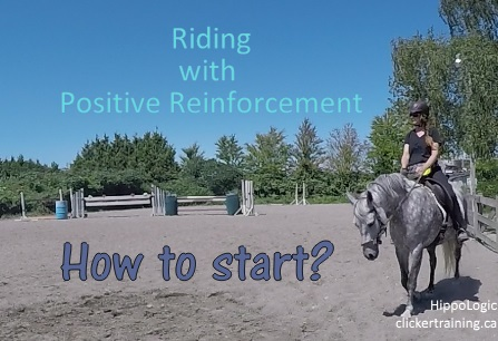 6 Steps to Start Riding with Positive Reinforcement (1/6)