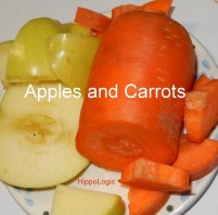 Apples and carrots are high value food rewards for most horses