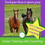 Grass training course with 2 weeks of individual coaching in a group