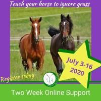 HippoLogic Grass Training grass training online course