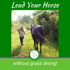 Self paced online Grass Training course without support