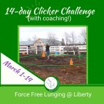 Topic: teach your horse to free lunge with R+