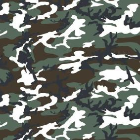 woodland camo (white, black, and green) holster print