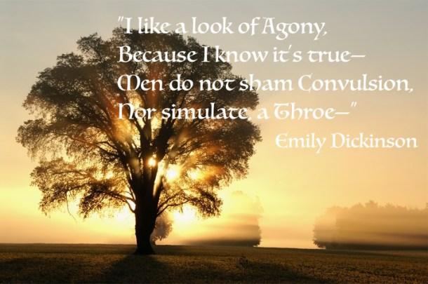 Emily D quote_sad