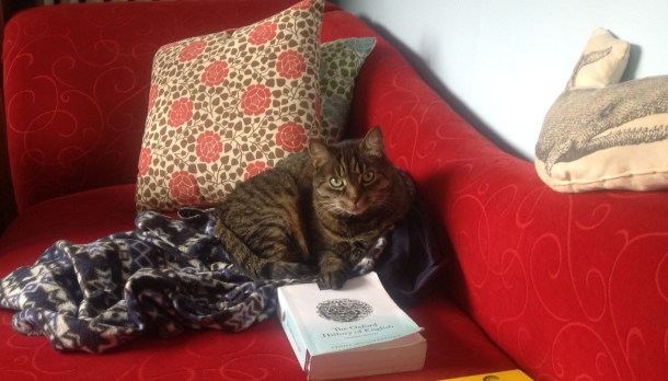cat and book