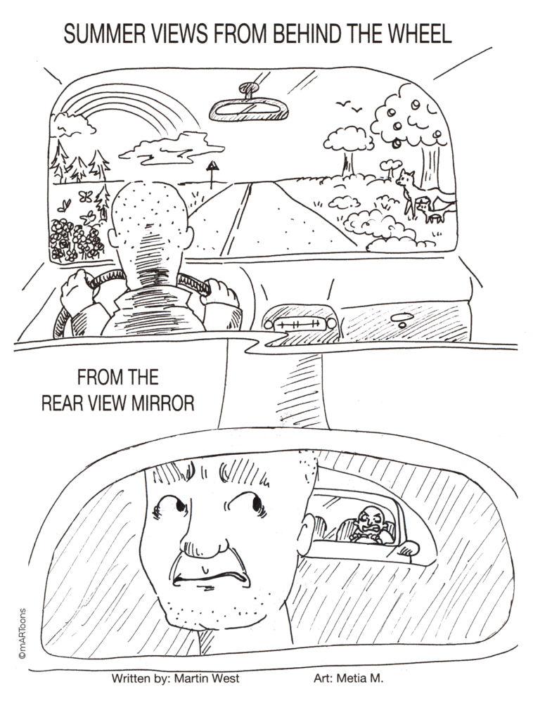 MT#315 Rear View Mirror
