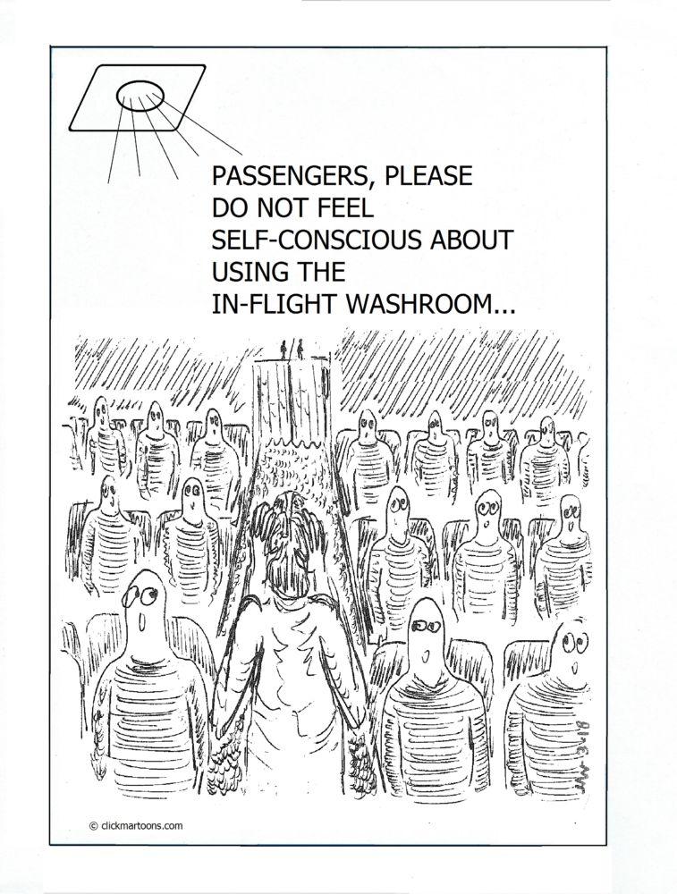 MT#696 In Flight Washroom