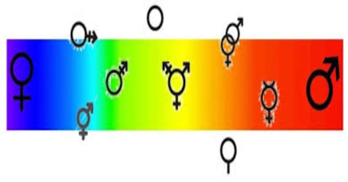 Você sabe o que é binarismo de gênero?
