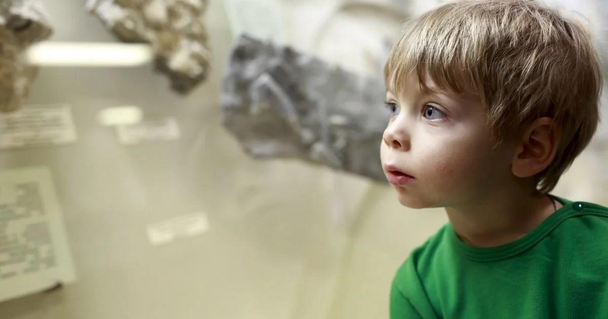 Museus para levar crianças: 3 melhores