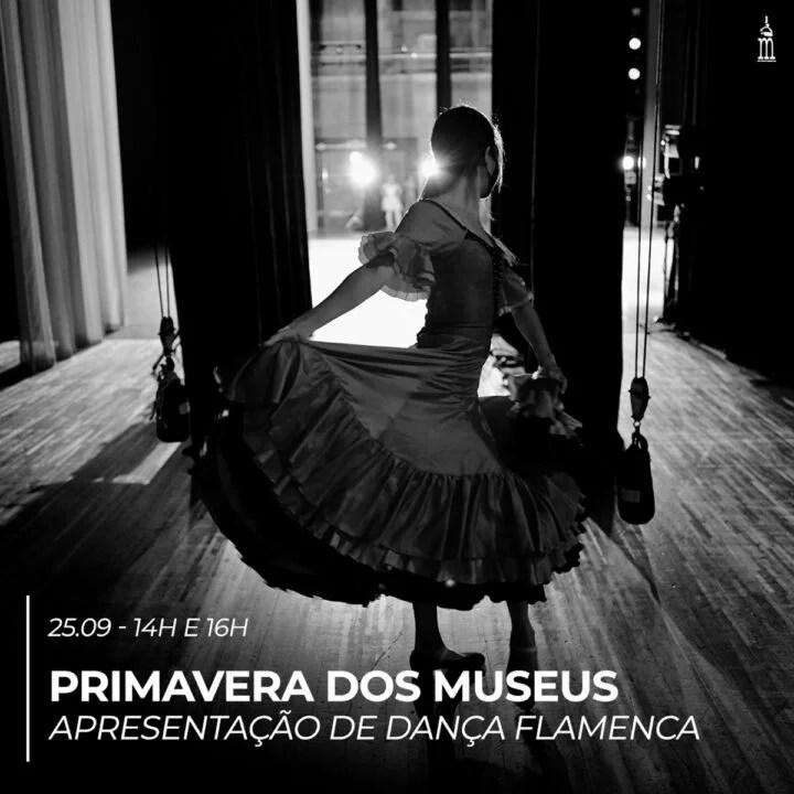 Museu do Café convida para apresentação de dança Flamenca