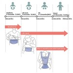 Baby Carrier 10
