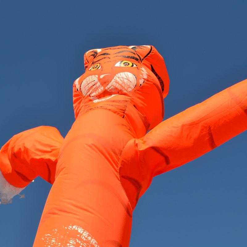 Skydancer huren