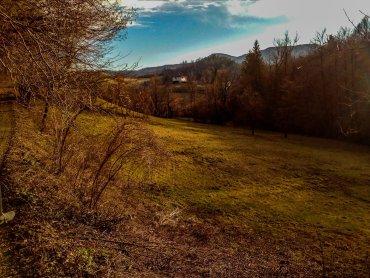 I boschi attorno a Le Carovane