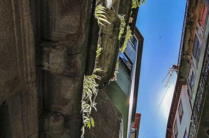 Porto Vicoletto caratteristico