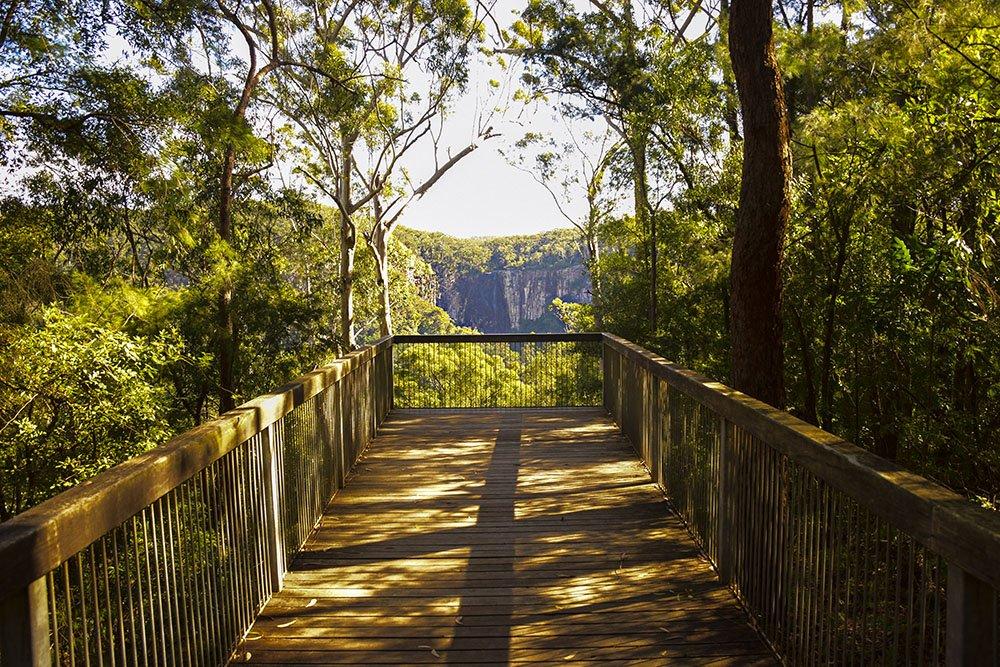 Nightcap National Cap Lookout panorama